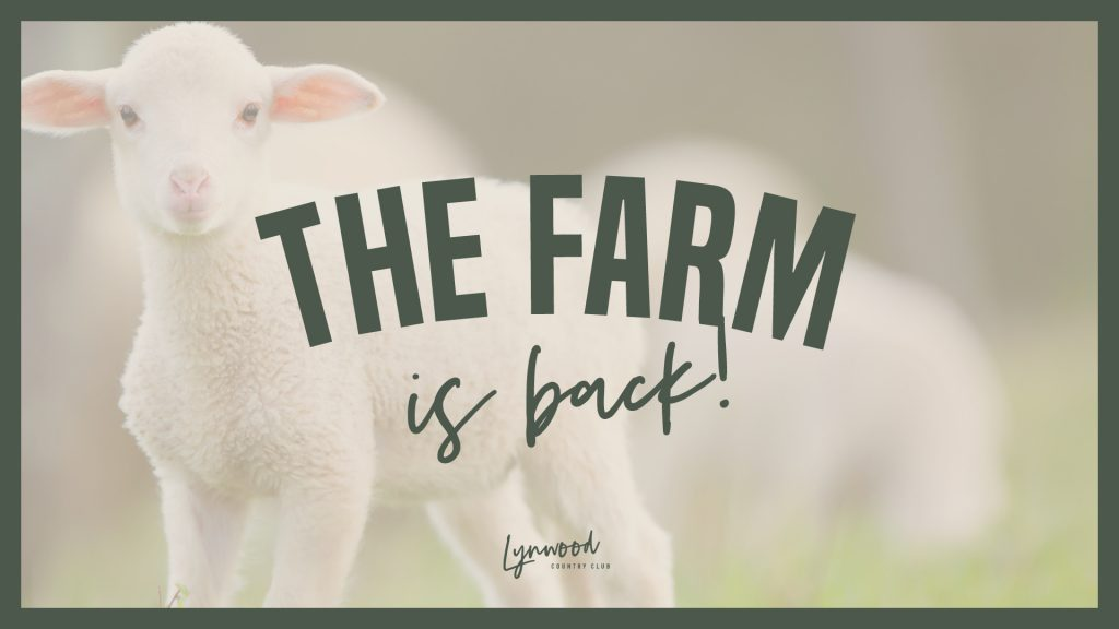 The Farm is back!